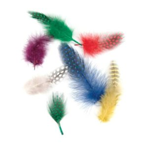 10 pcs Real Assorted Feathers Nail Art Hot Neon Color Polka Dot Craft Decoration
