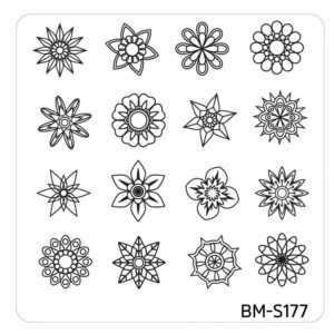 10pc-nature-themed-nail-stamp-plates---mystic-woods-set-1 BM-S177
